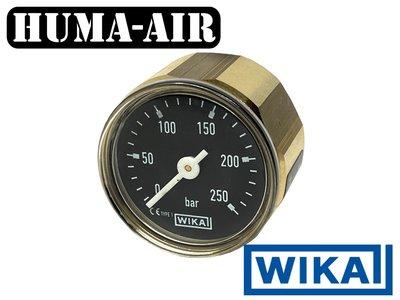 Wika mini pressure gauge 28 mm 250 bar black scale